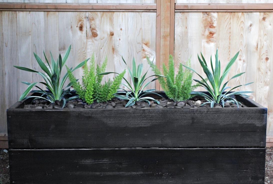 Modern Planter Boxes